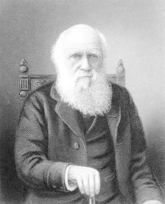 查尔斯.达尔文提出「不实用的美」和择偶的关联。 PHOTOGRAPH BY TIME LIFE PICTURES, MANSELL, THE LIFE PICT