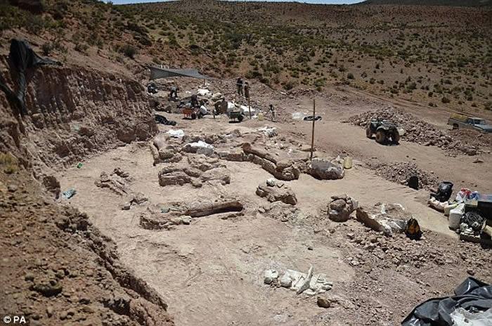 阿根廷巴塔哥尼亚发现迄今最大恐龙——巴塔哥泰坦龙Patagotitan mayorum