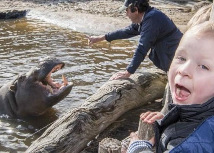 小孩子见河马张口,自己也张口。