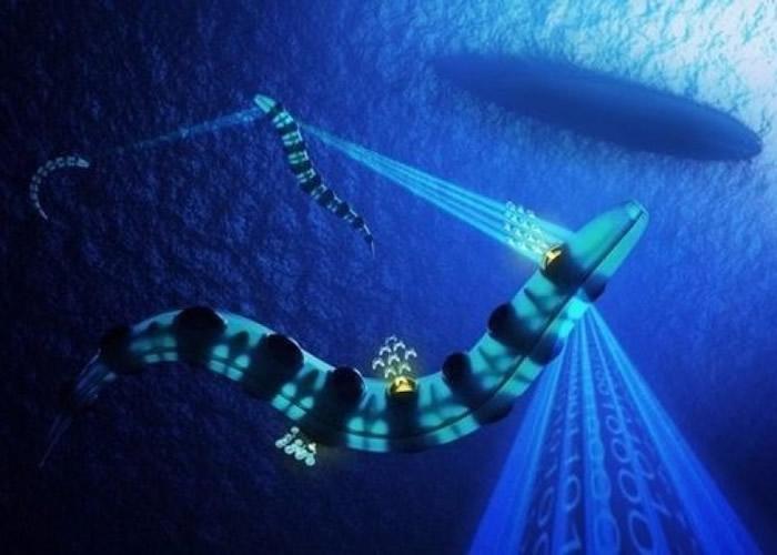 另一款潜艇以海鳗为设计蓝本。