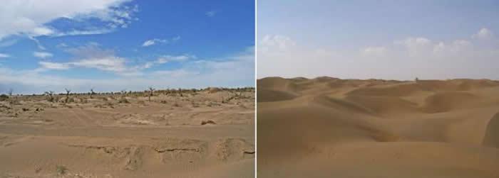 左,戈壁沙漠地貌(2009年9月陈柏静拍摄于内蒙古额济纳旗);右,塔克拉玛干沙漠地貌(2005年7月陈柏静拍摄于塔克拉玛干沙漠)。