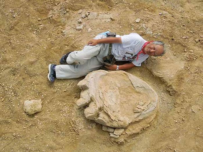 蒙古国戈壁沙漠发现3个超过1米的巨型恐龙足迹化石 推测恐龙体长超过30米