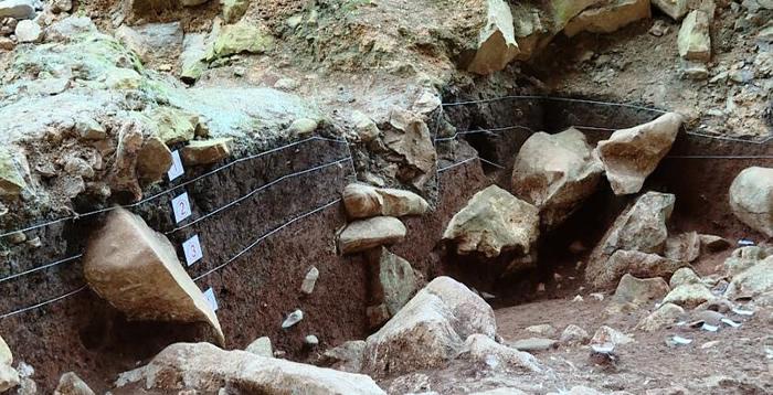 广西隆安娅怀洞遗址考古发掘出16000多年前人类头骨化石