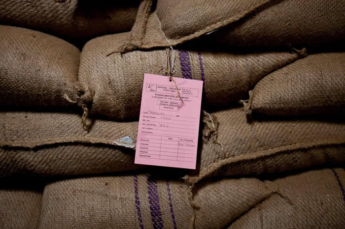 坎帕拉的Kyagalanyi Coffee Ltd工厂中一袋袋准备出口的咖啡豆。 PHOTOGRAPH BY TREVOR SNAPP, BLOOMBERG V