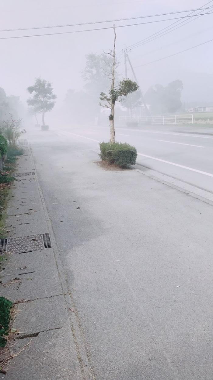 有火山灰落在附近城市。