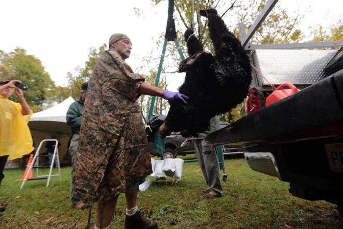 有猎人们估计,今年可能是新泽西最后一个狩猎季节。