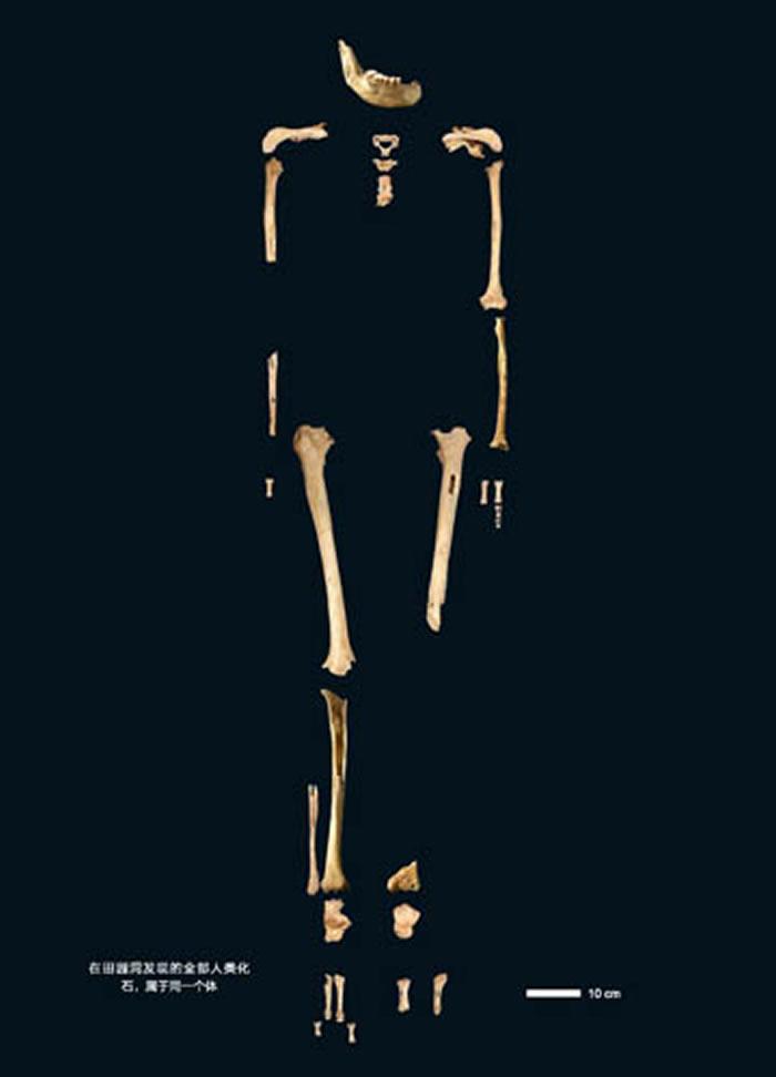为欧亚早期人群结构提供新洞见