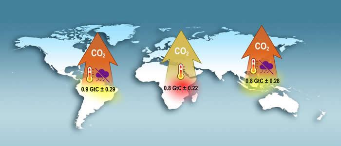 轨道碳观测卫星-2使NASA获得有关全球碳循环的宝贵知识