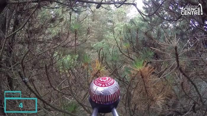 泰利降落在加洛韦森林公园。
