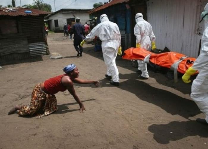 非洲于2014年爆发大规模埃博拉疫情。