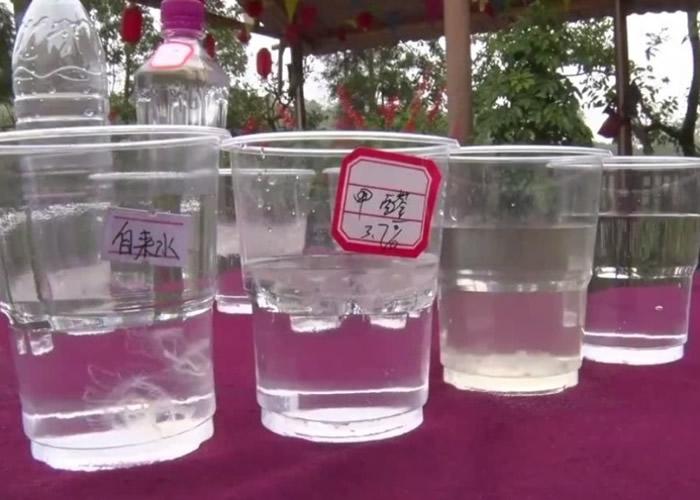 专家采样后指出,鱼塘水源没受染污及四周生态环境很好,适合桃花水母生存。