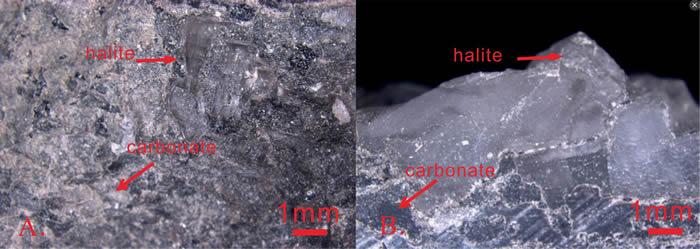 鄂尔多斯盆地马家沟组榆-9井中与灰岩共生的石盐