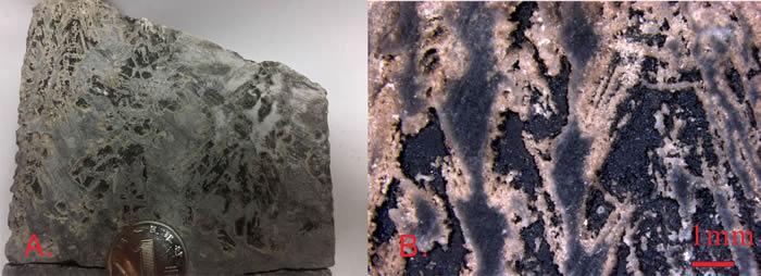 鄂尔多斯盆地马家沟组榆-9井中与灰岩共生的硬石膏