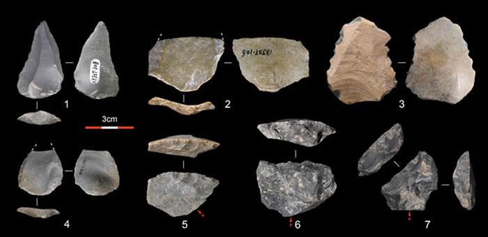 金斯太遗址出土的石制品