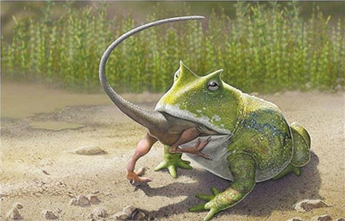 """""""魔鬼蛙""""真能吃掉恐龙?"""