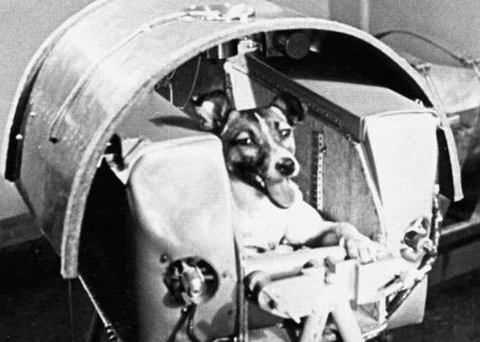 莱卡当年为人类太空科技史书创新一页。