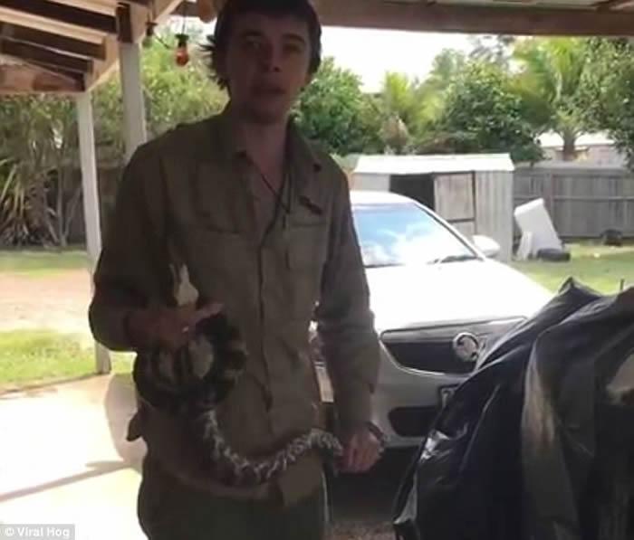 """澳洲蟒蛇潜进寓所缠住家猫要""""开餐"""""""