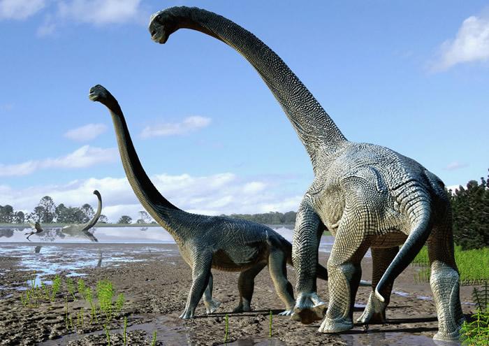 大型草食性恐龙并非任何时候都吃素