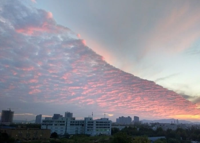 """夕阳映照下,""""火烧云""""显得份外优美。"""