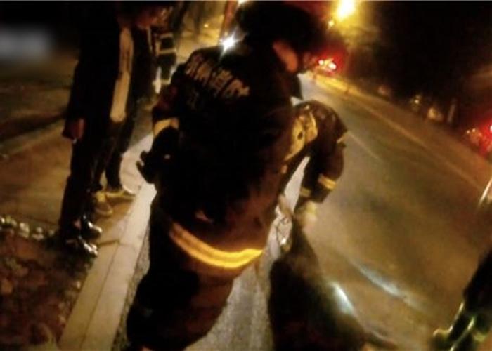 野猪被撞毙后卡在车底,警方及消防合力始能将其拖出。
