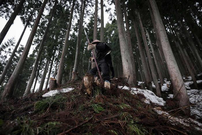 秀夫先生是阿仁又鬼猎人群体的领袖之一。他穿着传统服饰,手握长矛,这支长矛已经在他的家族传承九代了。 PHOTOGRAPH BY JAVIER CORSO