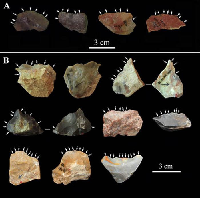 飞梁遗址出土的部分石器(裴树文供图)
