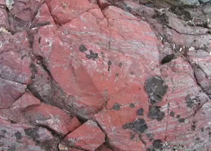 印度中部地区瓜廖尔盆地沉积物中发现20亿年前地球原核生物化石