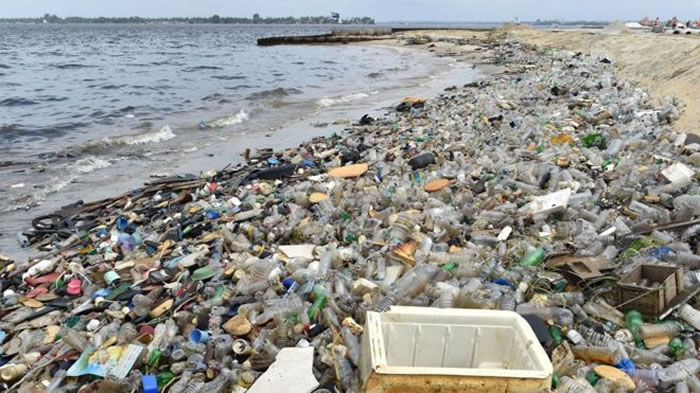 人类丢弃的垃圾正吞噬海洋生物 海龟因体内累积太多塑胶垃圾爆炸惨死
