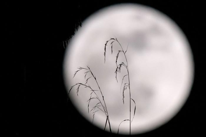 月亮现时与地球相隔于最短距离。