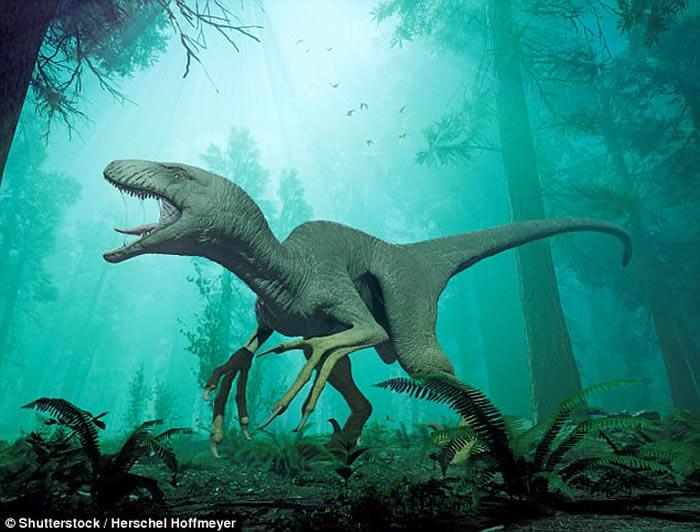 印度北阿坎德邦废弃变电厂发现长相酷似恐龙的神秘生物遗骸