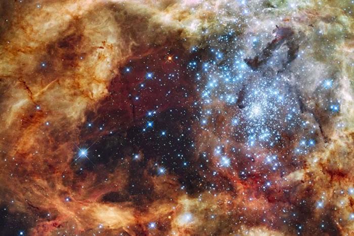 大型恒星比预测的更为普遍