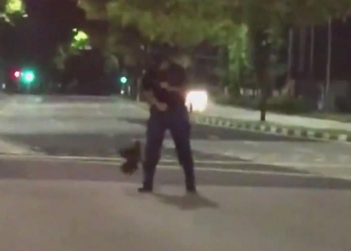 公鸡攻击民防部队成员。