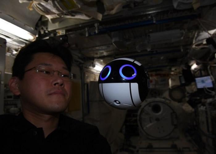 金井宣茂在空间站展开各种任务。