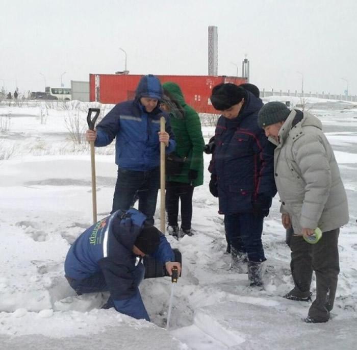 专家收集黑雪样本检测。