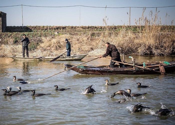 从11月到来年2月,王海一家基本在湖面生活。