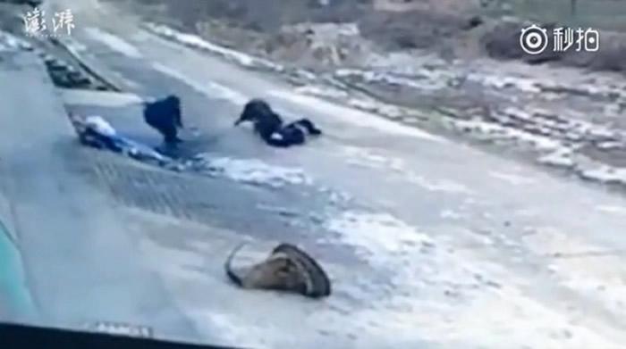 66岁张姓老翁惨被野猪咬死,村民见状急忙上前帮忙想要驱赶。