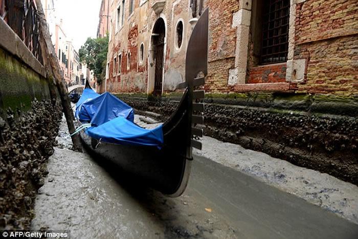 """""""超级蓝血月""""惹的祸?意大利著名水都威尼斯河道干涸"""