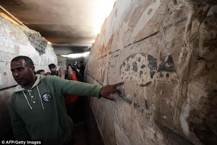 考古学家团队发现4400年前埃及第五王朝时期高级女祭司海特佩特古墓