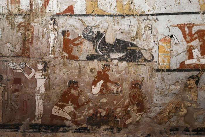 照片可大致看出这座古王国女祭司墓中的珍罕壁画保存良好,该墓位在开罗南方郊区的吉萨平原上。 PHOTOGRAPH BY MOHAMED EL-SHAHED, AF