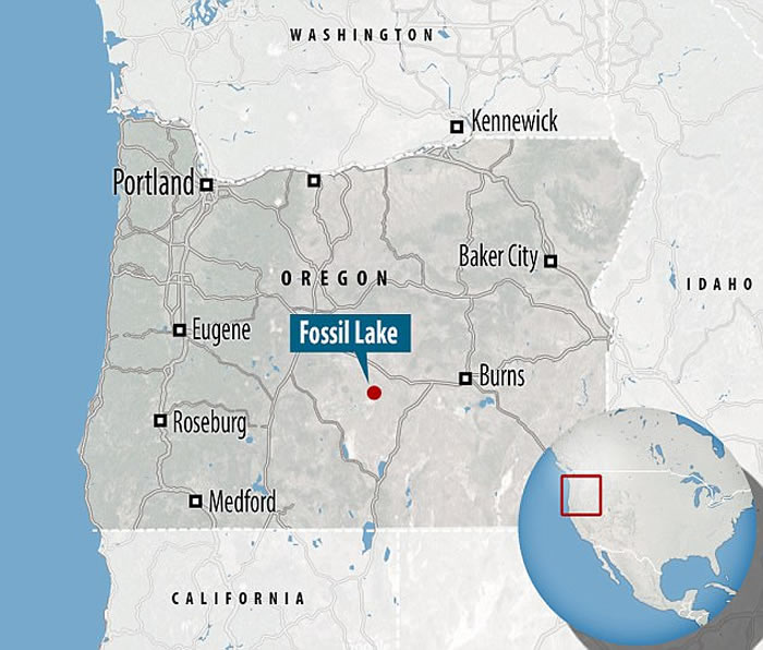 美国俄勒冈州发现的远古庞然大物足迹化石提供线索
