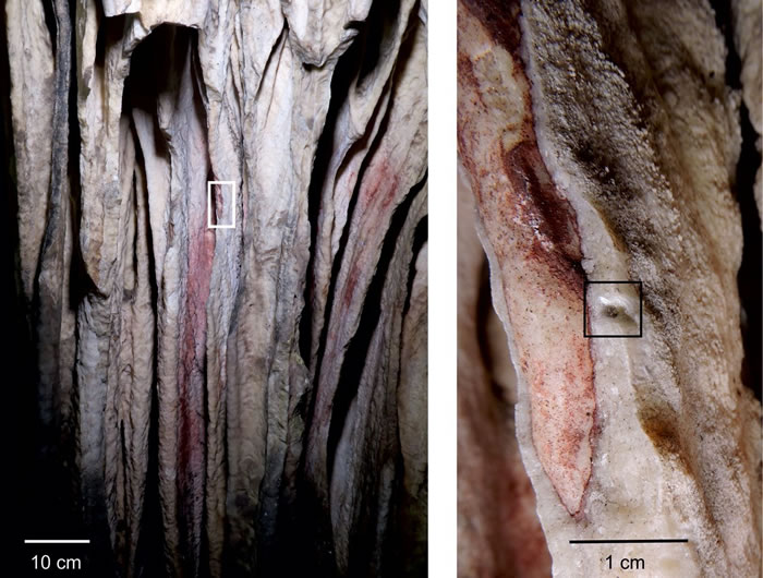 最古老岩画出自尼安德特人 而并非人类祖先智人
