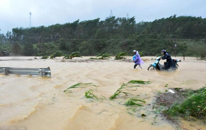 台风达维在越南造成严重破坏。
