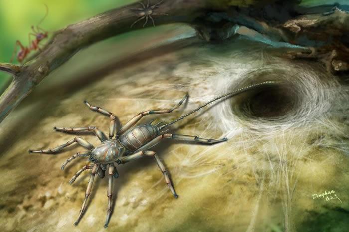 堪萨斯大学的学者保罗.赛顿(Paul Selden)说,这种古老的蛛形生物可能用它鞭状的尾部来侦测环境,就像天线一样。 ILLUSTRATION COURTES