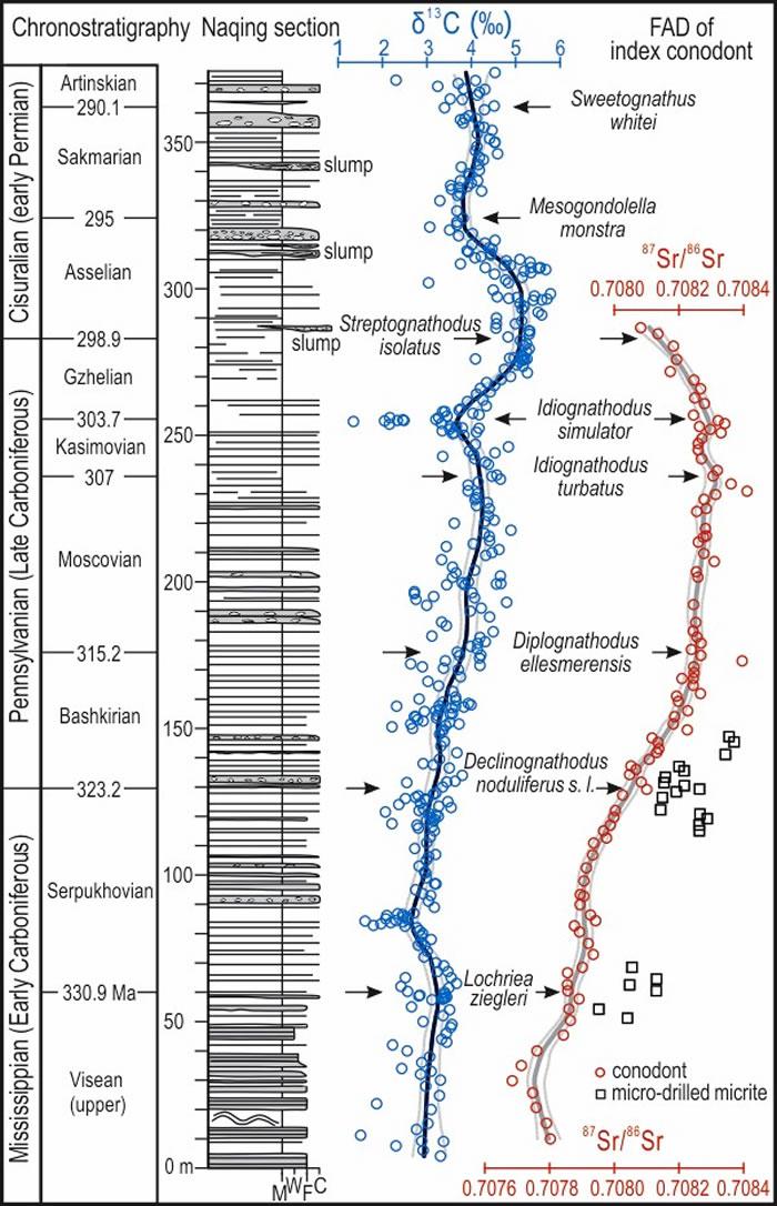 纳庆剖面柱状图及碳、锶同位素