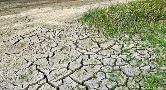 人类活动导致的气候变化将使美国2020年频繁出现极端炎热天气