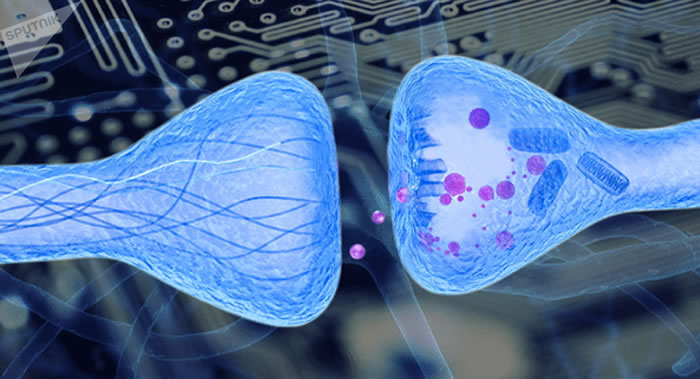 俄罗斯喀山生物学家研制出可抑制肌无力且无强烈副作用的新型药物
