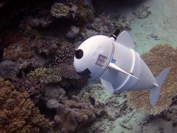 MIT学者研发的SoFi机器鱼