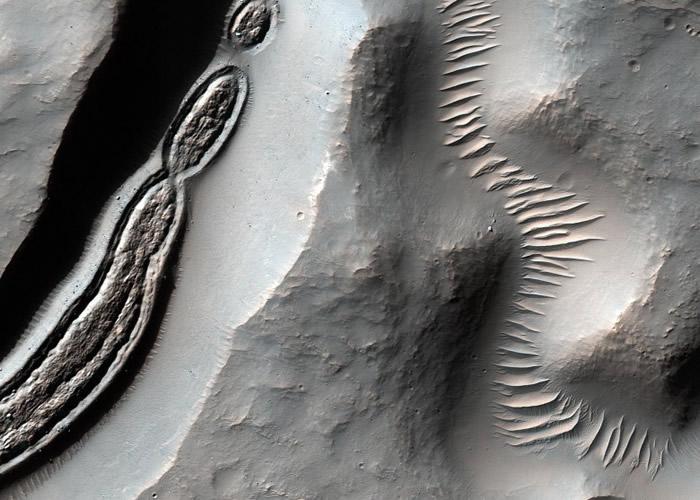 NASA公开新火星表面怪异照片 似显微镜下细菌图像
