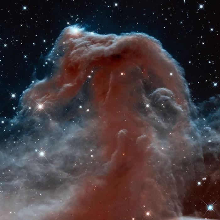 马头星云就嵌在浩瀚、复杂的猎户座星云中。 PHOTOGRAPH BY NASA