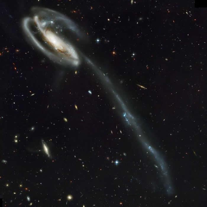 哈伯望远镜拍摄的这张影像,可以清楚看出蝌蚪星系得名的原因。 PHOTOGRAPH BY NASA